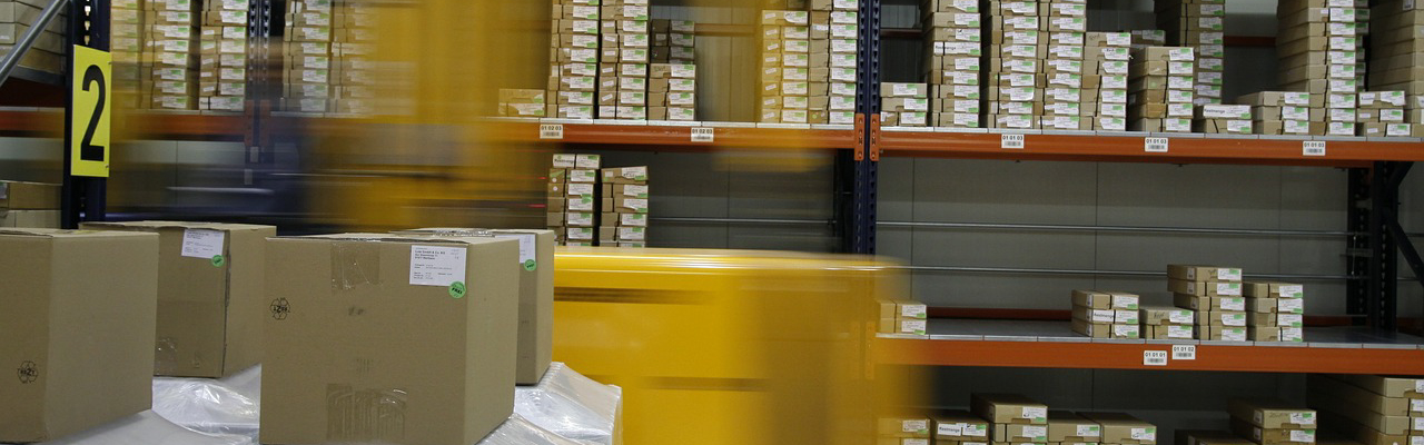 ERP software for distribution