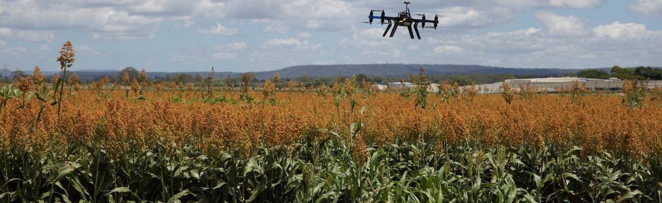 tehnologie pentru agricultura