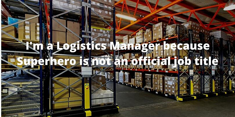 software erp wms logistica